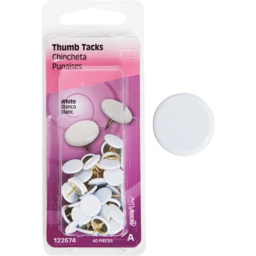 Hillman Anchor Wire White 23/64 In. x 15/64 In. Thumb Tack (40 Ct.)